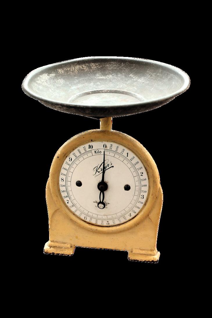 Best Kitchen Scales Reddit