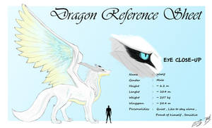 Woolf - Dragon Reference Sheet