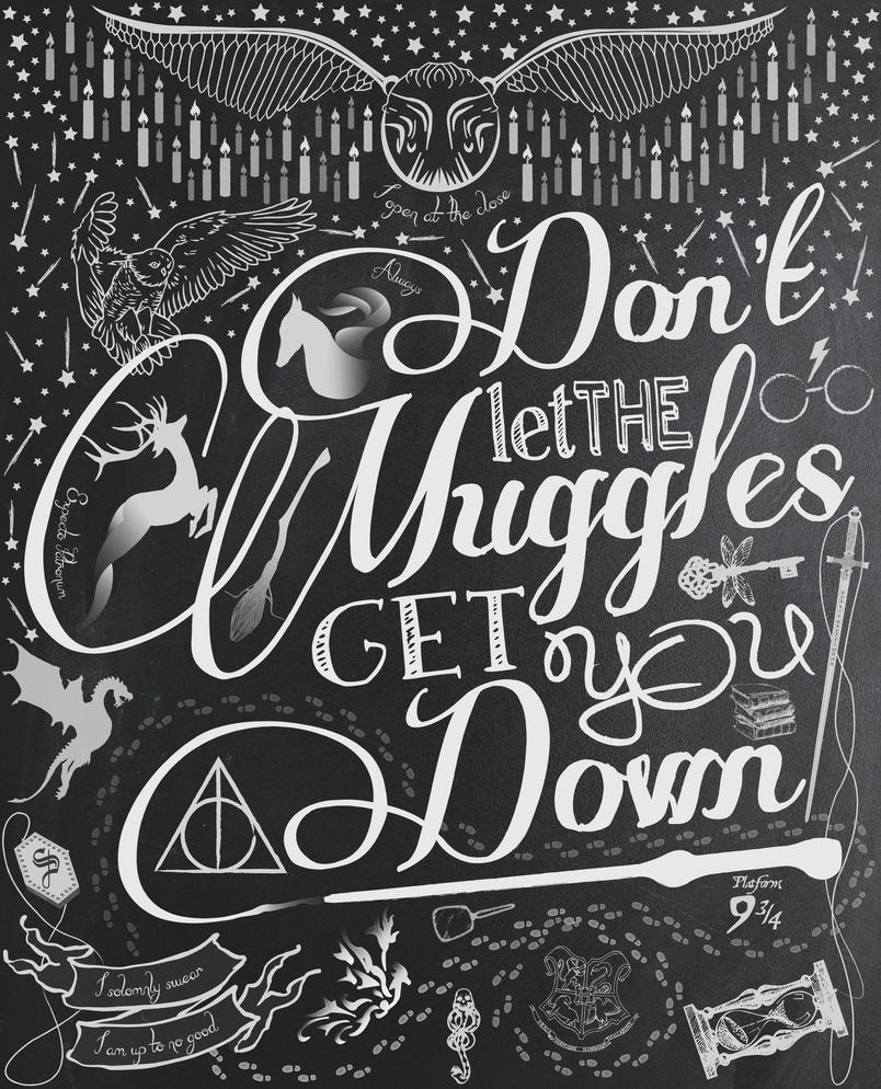 Don't let the Muggles get you down. by grumbles87