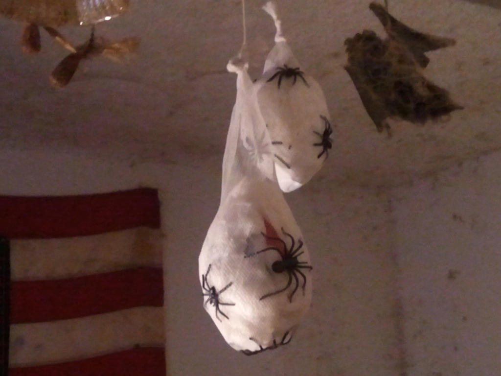 My first homemade spider egg sac! by BenorianHardback26