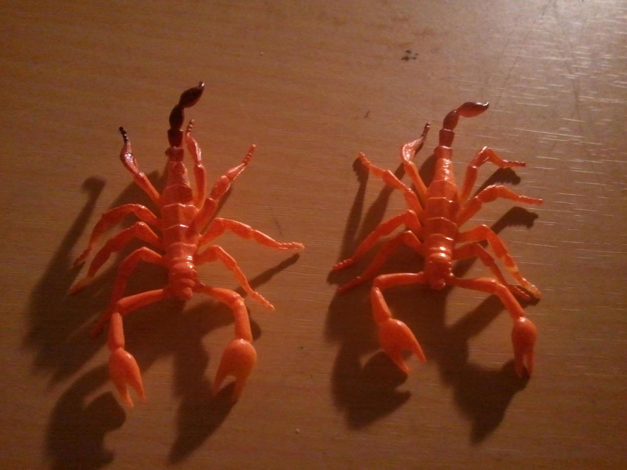 Older World Scorpions? by BenorianHardback26