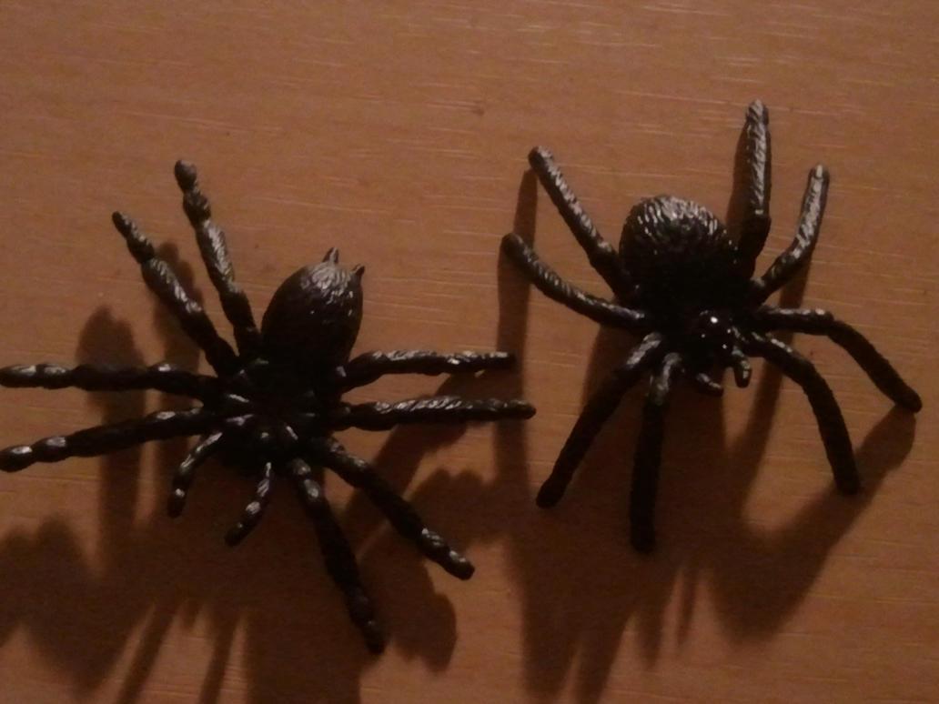 two new spiders by BenorianHardback26