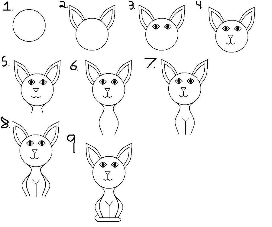 how to teach a cat