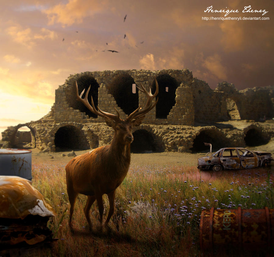 Desolate by Henriqu3Campos