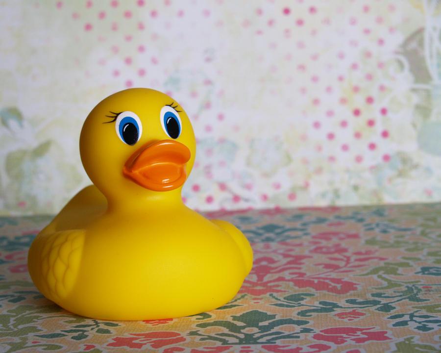 Rubber duck girl porn furry hentai gay