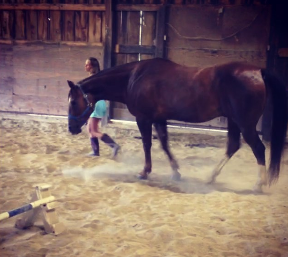 Horse Nerd by Rivitr