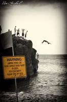 Defiance - Waimea Bay by IsacGoulart