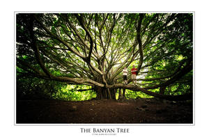 the Banyan Tree by IsacGoulart