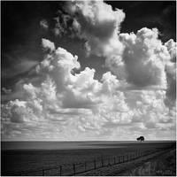 Forsaken - BW by IsacGoulart