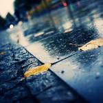 Rainy Day in Berlin