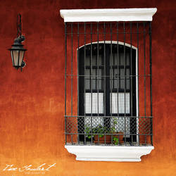 Window by IsacGoulart