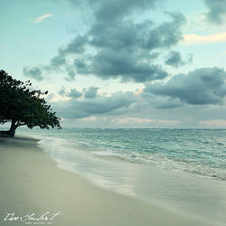 Quiet My Soul III by IsacGoulart