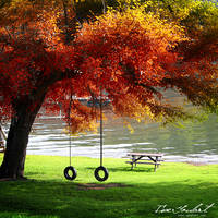 An Autumn Tranquility