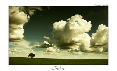 Freedom by IsacGoulart