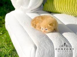 comfort matress adv03 by SOOO