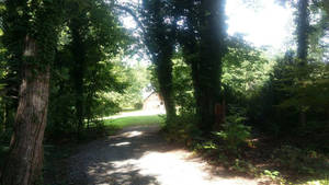 Farm path by Whitefeathur