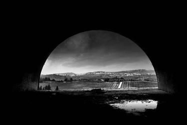 Fields of Ruin by Taltala