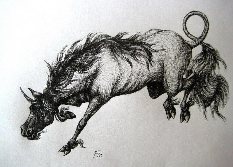 wild unicorn by wildelbenreiter