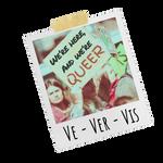 Polaroid-Ve