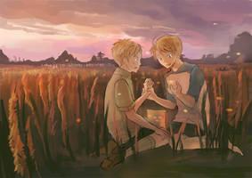 meadow by hakuku