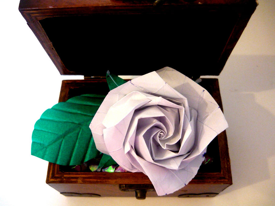 Full Bloom Rose by random-lil-azn