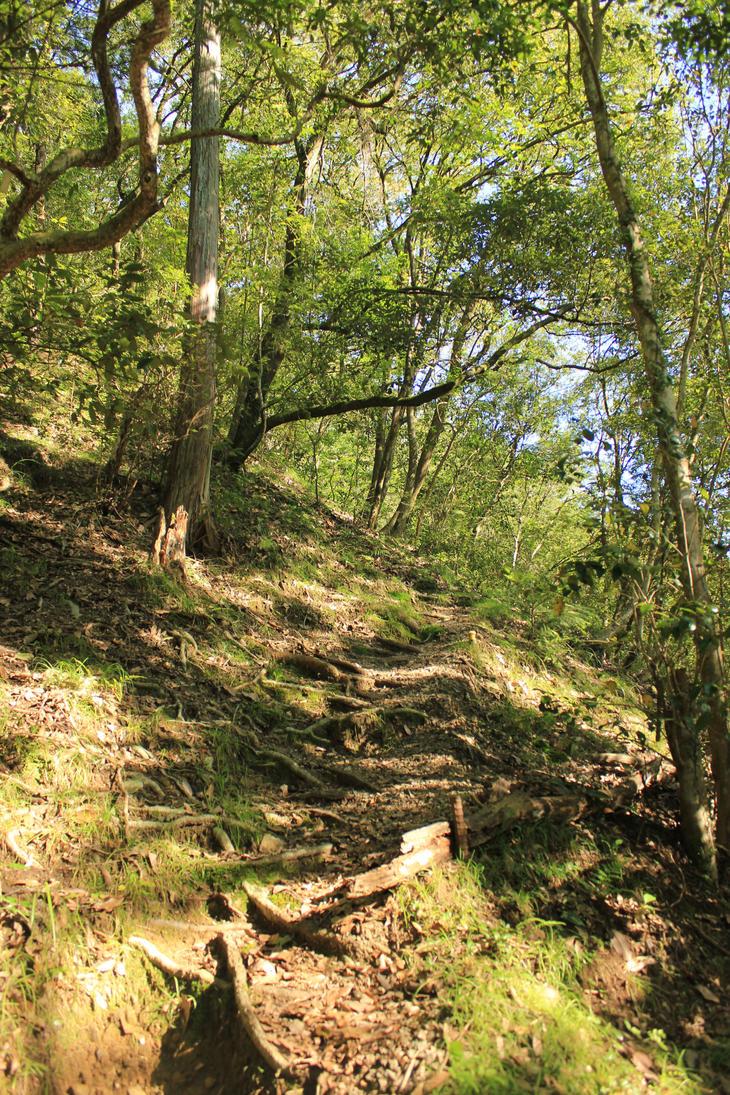 steep path upwards by rayna23