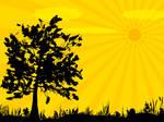 alone tree yalniz agac