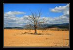 Desolation by monteycarlos