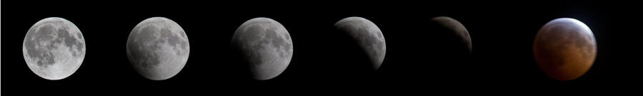 Lunar Eclipse 2010 by Lonewolf-Eyes