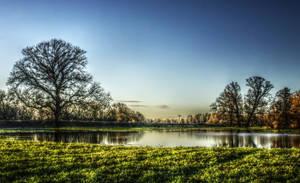 nature's arise by monojam