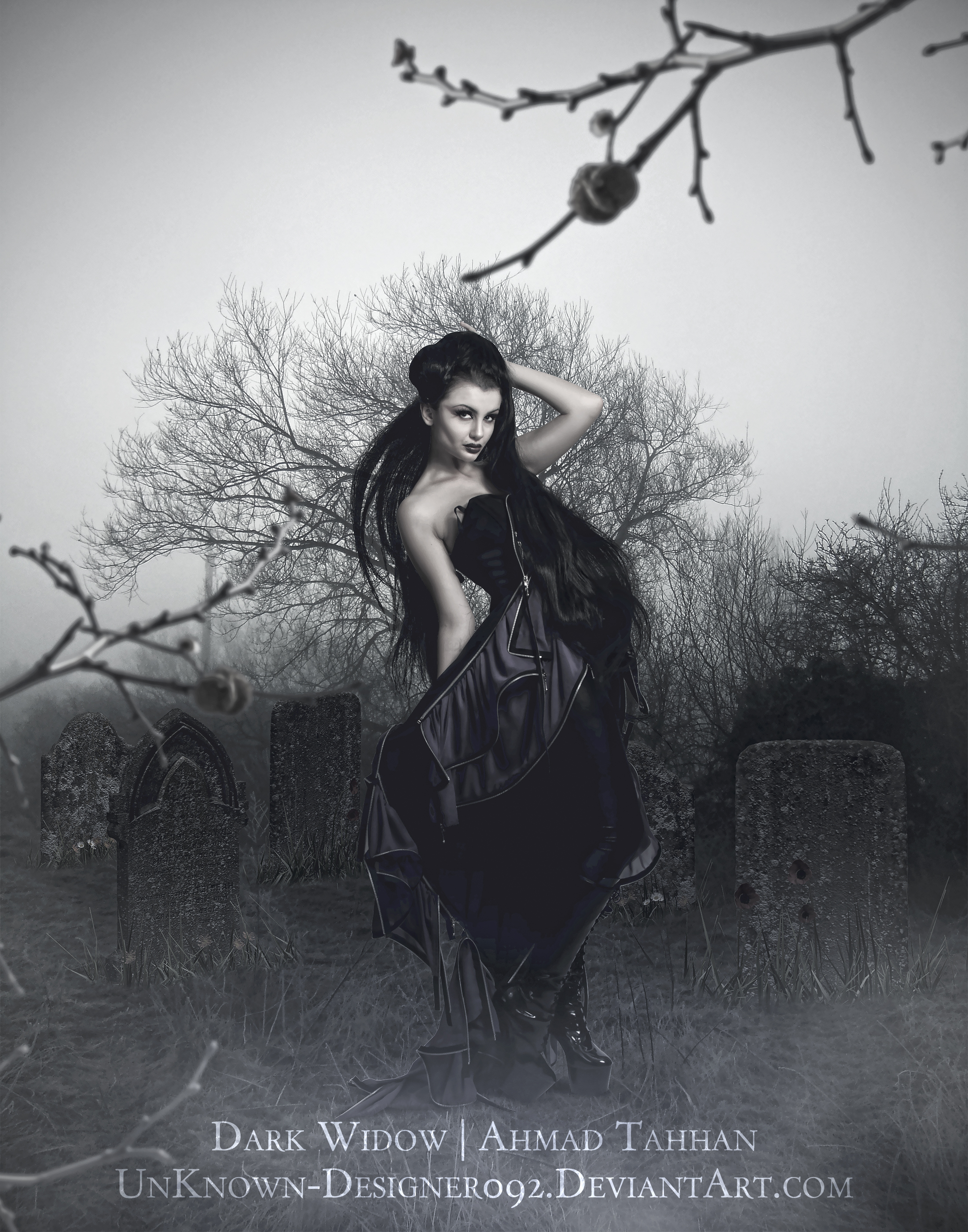 The Dark Widow by UnKnown-Designer092