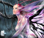 Static Fairy