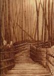 The Pathway
