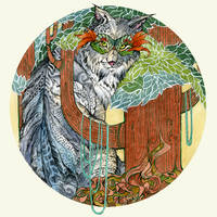 Lynx by Calmality