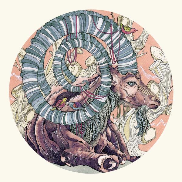 Nubian Ibex by Calmality