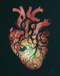 Follow Your Heart by Calmality