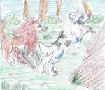 Exploration with Shimenawa by Seidenschrei