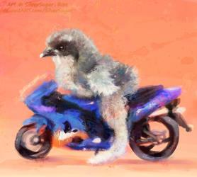 Bike Chick by SilverSugar