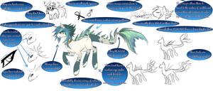 .:EDIT:.Yacuruna Pony Species info third draft