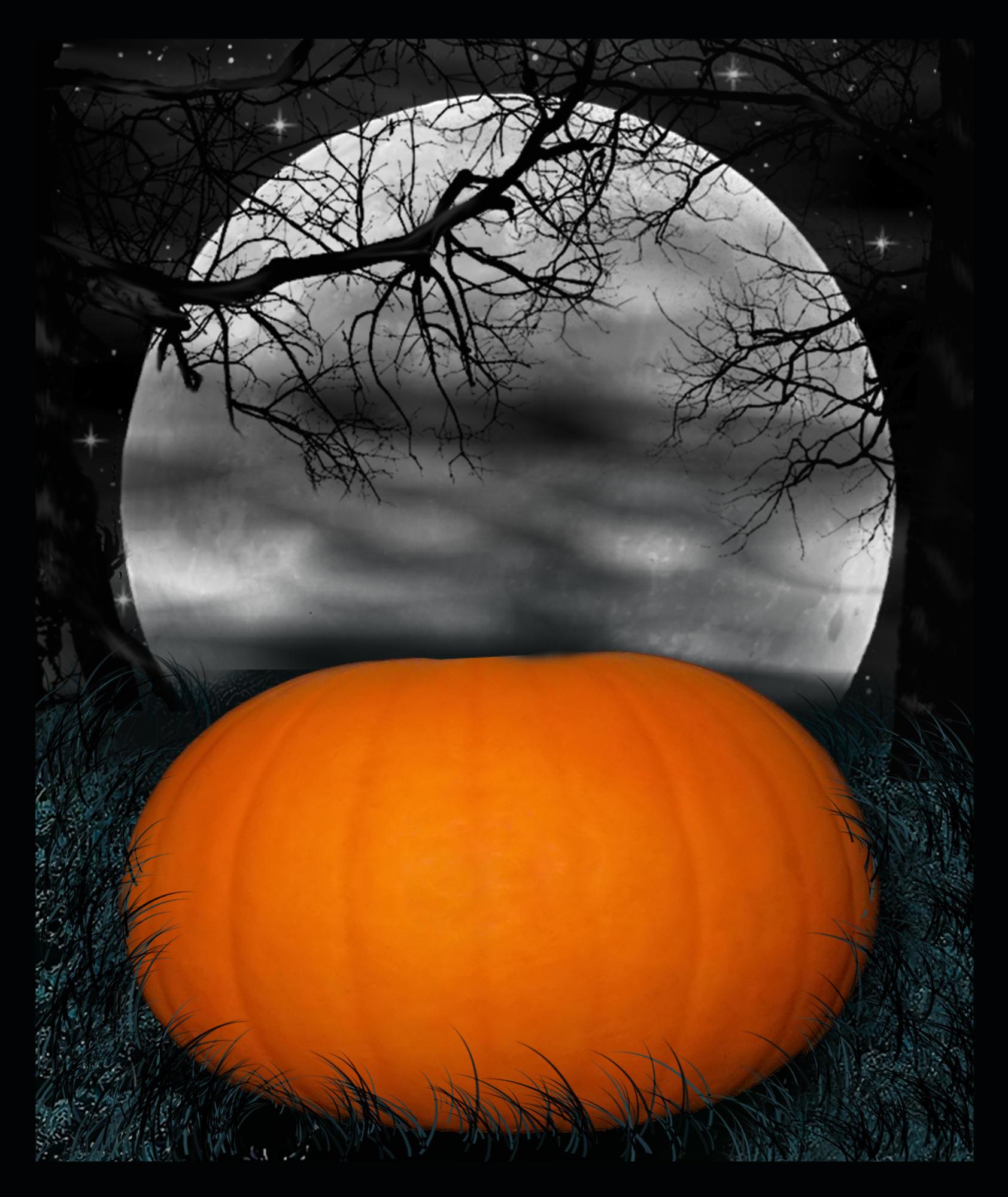 Halloween Backdrops