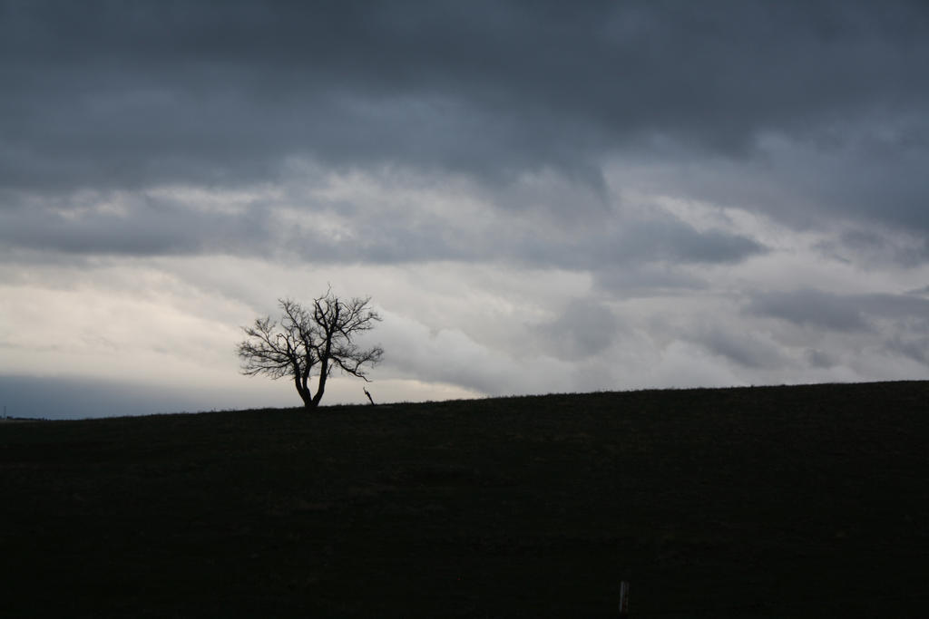 937 by Skaylez