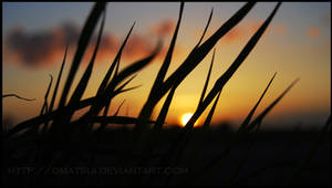 A shy Sun by dmatsui