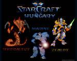 Starcraft 2 Hungary - 2