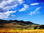 Rippling Hills