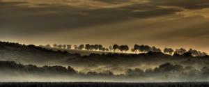 Foggy Morning III by Hellweg