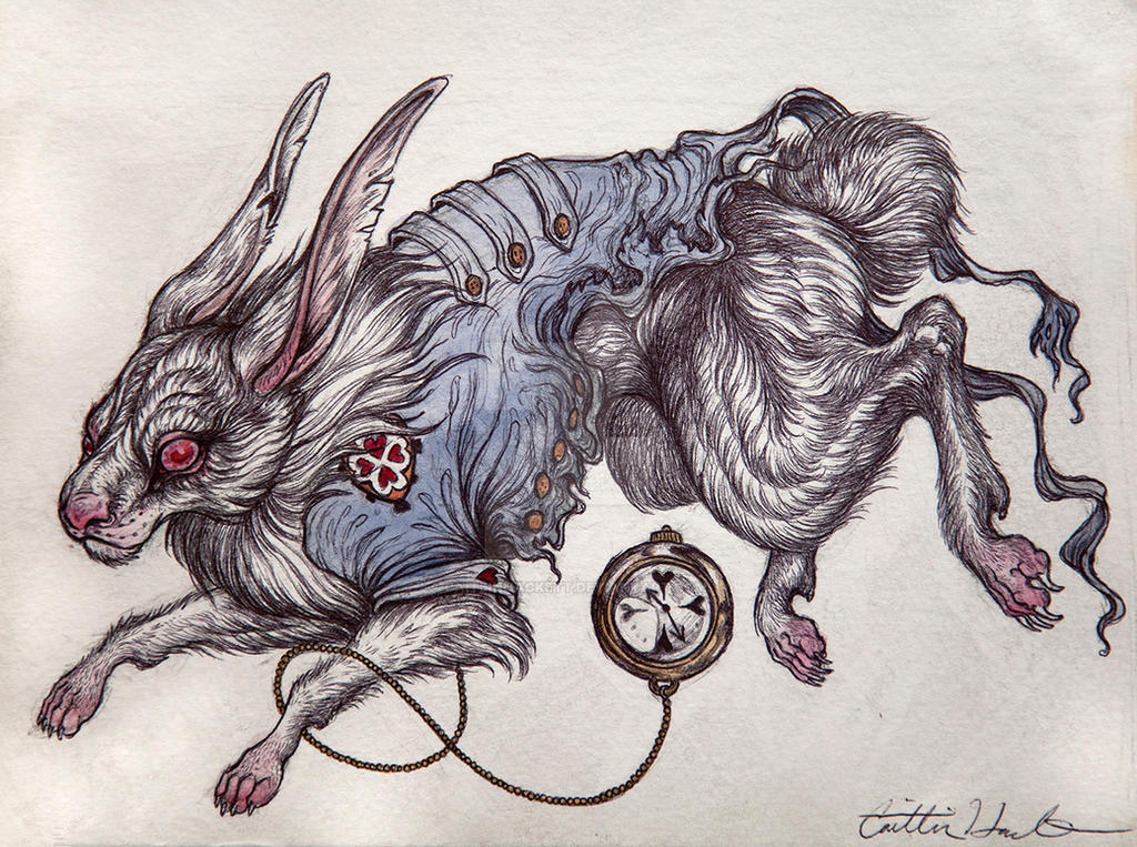 The White Rabbit by CaitlinHackett