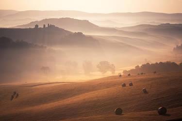 misty morning by Fersy