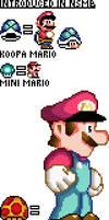 New Super Mario World?