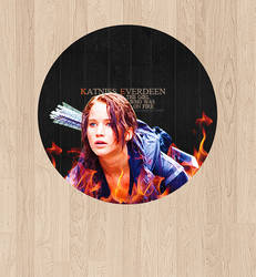 thg. the girl who was on fire.