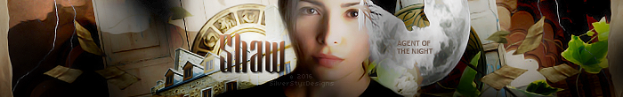 Shaw Banner by HedgeWitch24